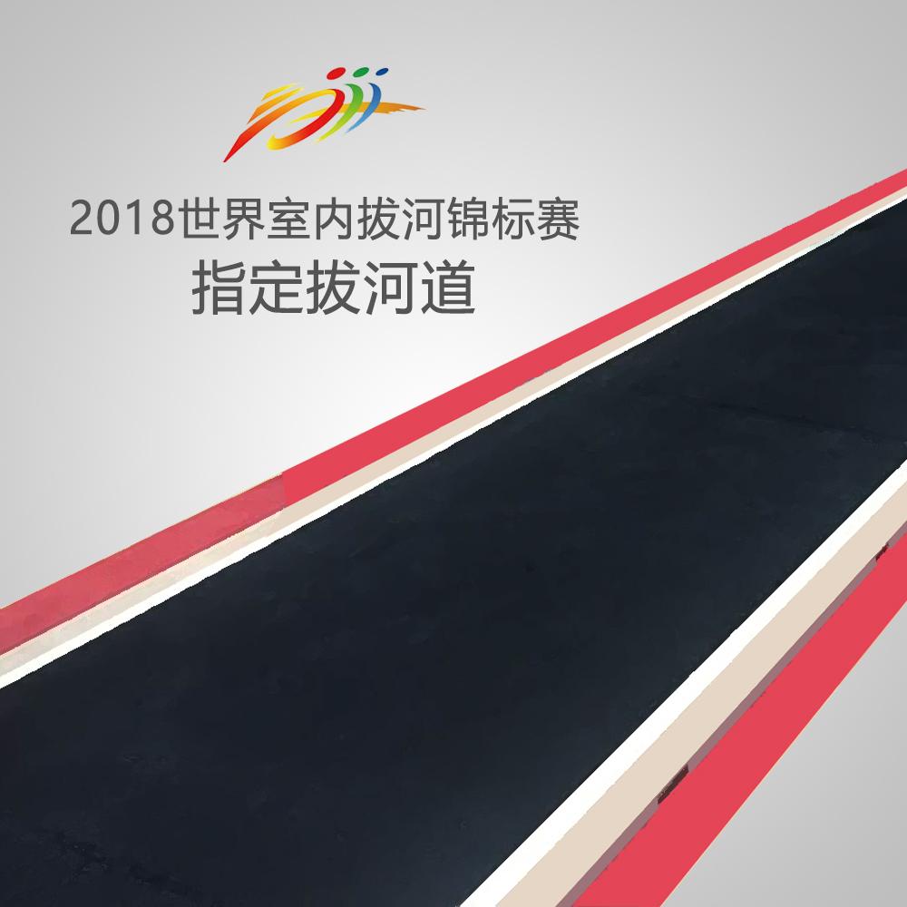 DOR邓禄普胶皮拔河道(通过国际拔联审定合格  世锦赛指定赛道)